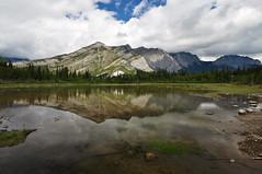 Reflecting pond (Just Peachy!) Tags: alberta canadianrockies bowvalleyprovincialpark manyspringstrail