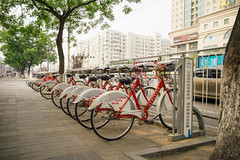 Beijing Public Bicycle System (sunnywinds*) Tags: beijing china bicycle       leica summilux summer street outdoor eco green