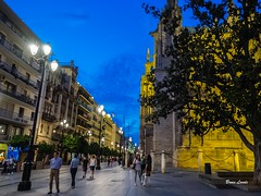 Spain May-June 2016-1271.jpg (bruce.lande) Tags: vowrenewal cathedral church sitges vacation flamenco mosque spain barcelona cava friends history madrid wine granda seville cordoba