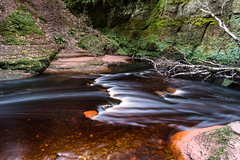 Red Matter (Ian D) Tags: fujixt2 finnichglen devilspulpit scotland burn stirlingshire water fuji fujifilm carnockburn