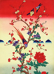 Tree peony, plum, clematis, golden pheasant and unknown birds (Japanese Flower and Bird Art) Tags: flower tree peony paeonia suffruticosa paeoniaceae plum prunus mume rosaceae clematis patens ranunculaceae bird golden pheasant chrysolophus pictus phasianidae ukiyo woodblock print japan japanese art readercollection