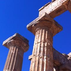 Sicilia 2016 (themancos) Tags: sicilia sicily selinunte tempio temple colonna column tempiogreco greektemple stiledorico capitello capitellodorico