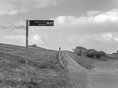 Landschaftspark - Monheimer Rheinbogen (KL57Foto) Tags: monheim am rhein stadt landschaft rheindamm kl57foto monheimamrhein stadtmonheim stadtmonheimamrhein germany rhineland nrw olympus pen epm2 rheinland sommert summer 2016 september landschaftspark rheinbogen sommer damm
