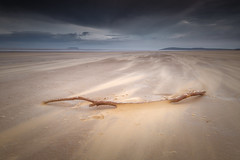 Tabula Rasa (Vemsteroo) Tags: 24mm 5d blustery canon coast mkiii sand storm sunset tiltshift windmill berrow sands somerset windy blown beach coastline coastal sea england landscape driftwood log ethereal atmospheric longexposure textures tse outdoors exploring overcast dramatic sweep leefilters circularpolariser ndgrad 09soft