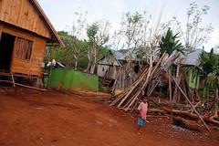 IMG_9008fr (Mangiwau) Tags: houses indonesia island south traditional bajo haus huts housing southeast pondok sulawesi indonesian pulau muna rumah muhammad adat buton kecil kraton raha tenggara tambo aswin kendari tengarra laode bombana torobulu