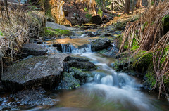 Stream by Crescent Meadow (dlee723) Tags: park national sequoia