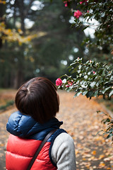 (moriyu) Tags: flower japan tokyo nikon shinjuku      d700