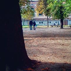 Walking away from contrast #milan #park...