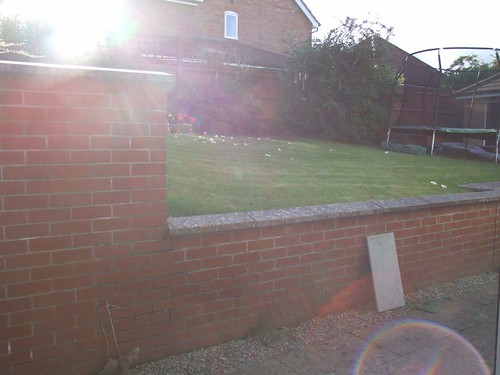 Landscape Gardening  Alderley Edge Image 14