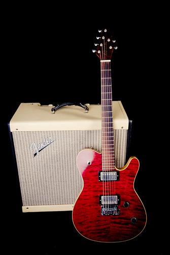 guitar electricguitar roballen