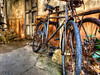 Junkyard Bikes (grandalloliver) Tags: africa vacation bike bicycle canon orlando florida disney disneyworld hdr themepark animalkingdom waltdisney topaz g12 photomatix topazadjust canonpowershotg12 grandalloliver grandalloliverphoto