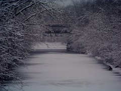 Winter Wonderland 2 (Renee Rendler-Kaplan) Tags: bridge trees winter snow ice water river frozen scenery december quiet silent gbrearview kodak saturday fresh clean fencing icy chicagoriver kodakeasyshare evanston winterwonderland gapersblock 2012 wbez northbranch chicagoist coldoutside nosunshine evanstonillinois seasonschange thankssamantha nocanoes reneerendlerkaplan nokayaking mccormickst anothergreywintryday