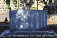 徳川慶喜 画像45