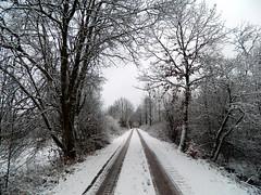 Snowy winter road (*M.*) Tags: road schnee trees winter snow germany way landscape deutschland snowy path landschaft bume winterwonderland weg winterlandscape winterlandschaft coloursofwinter