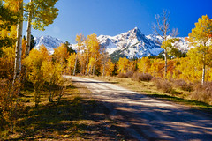 My Special Place (Aspenbreeze) Tags: road autumn trees snow rural colorado country pasture aspens dirtroad mountians countryroad sanjuanmountains oldroad aspentrees mountainpeak bestcapturesaoi aspenbreeze rememberthatmomentlevel1 topphotospots tpslandscape gpsetest bevzuerlein
