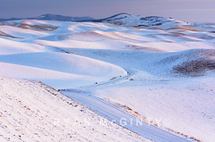 Palouse Winter Road (Ryan McGinty) Tags: rollinghills ryanmcginty palouse sunrise winter idaho landscape road snow morningsfirstsunlight windingroad moscowmountain paradiseridge latahcounty moscow