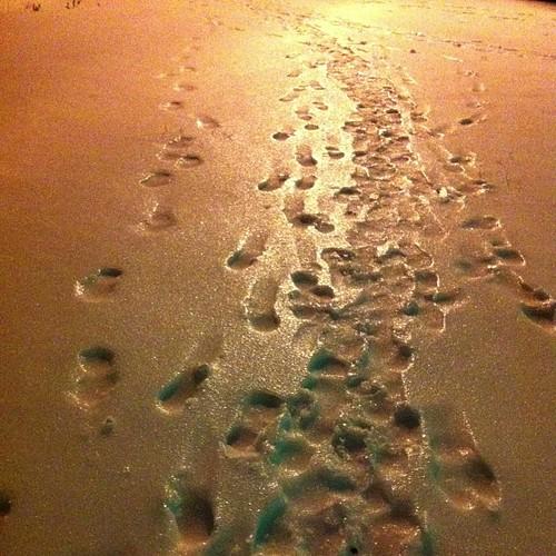 #таганрог #понедельник #зима #гололёд #sleet #icing #freezing rain