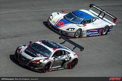 APR-Motorsport-Rolex-24-2013-166