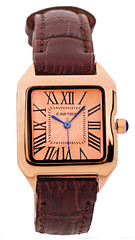Cartier-Model01 (Hassan AlMarhoun) Tags: brown leather hand watch cartier