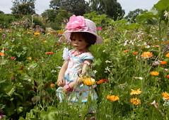 Milina immer wohl behtet ... (Kindergartenkinder) Tags: dolls himstedt annette kindergartenkinder essen park gruga garten kind personen milina blumenwiese blumen pflanze