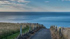 path to the sea (Kellilei) Tags: arch beach bogen canon cliff coast compact dunedin g5x neuseeland new ocean ozean pacificpazifik sea south sdpazifik tunnel water zealand