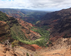 waimea canyon (1600 Squirrels) Tags: 1600squirrels photo 5dii lenstagged canon24105f4 waimeacanyon canyon waimeariver landscape gorge waimeacanyonstatepark westside kauai kauaicounty hawaii usa