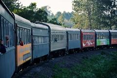 Serra Verde Express (Billy W Martins ) Tags: trem train serraverdeexpress serradomar vagões passeio fun diversão curitiba morretes passageiros passenger nikon d7100 wagon wagons tourism turismo