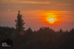 (tom.beale87) Tags: epsom downs sun sunset