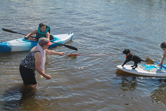 Gabby - Don't rock the Boat! (crisp4dogs) Tags: gabby pwd portuguesewaterdog crisp4dogs alice beth intercoastal waterway paddleboard puppy water lizzy
