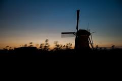 Kinderdijk, the Netherlands (matthijs rouw) Tags: netherlands windmill windmills kinderdijk molen molens avond sunset