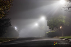 Foggy Street at Night (grobler.inus) Tags: fog mist evening photography longexposure longexposurephotography landscape lights rays lightrays condensation nature weather waterdrops water humidity rain spooky horror