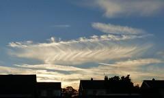Cloud delight (Jane.Des) Tags: cirrus clouds evening sky outdoor