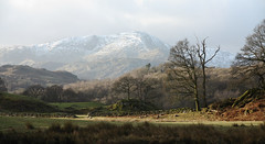 Wetherlam from beside Elterwater, near Skelwith Bridge, Great Langdale, Lake District National Park, Cumbria, UK (Ministry) Tags: wood uk winter snow tree stone wall nationalpark great lakedistrict dry valley cumbria drystonewall cumbriaway langdale elterwater skelwithbridge wetherlam greatcarrs littlefell greatintake carrhowes fletcherswood