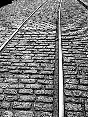 Tracks in Savanah, GA (lroberg) Tags: blackandwhite georgia south tracks savannah topazadjust