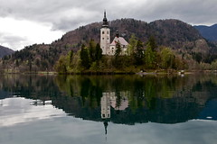 Bled Castle Reflection (Cristoperi7) Tags: lake reflection castle church nature water architecture boat slovenia bled gondola lakebled julianalps bledcastle canonef24105mmf4lisusm pletna canoneos5dmarkii pilgrimagechurchoftheassumptionofmary pletnaboat