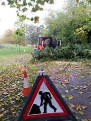 2012-10-22 | 03 Hill's meadow - tree down (Mark & Naomi Iliff) Tags: thames river caversham hillsmeadow