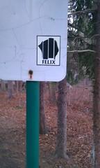 Black flag (FelixSticker) Tags: streetart art graffiti stickerart felix stickers blackflag felixtsicker