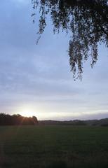 Sunrise (Canon Canonet QL17 G-III, AgfaPhoto Vista 200@400) (baumbaTz) Tags: morning trees summer sun tree film field sunrise canon germany deutschland atl sommer feld rangefinder 400 200 brest vista 17 kit g3 agfa sonne bume sonnenaufgang morgen canonet ql17 giii manualfocus baum stade 2012 2200 selfdeveloped niedersachsen lowersaxony c41 jobo colorfilm ql autolab 200400 tetenal agfaphoto messsucher atl2200
