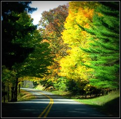 Garrett County MD ~ sliding down the road - HSS! (karma (Karen)) Tags: trees leaves lomo fallcolors maryland roads 4autumn squared hss stateforest cmwdyellow garrettco canong10 sliderssunday picmonkey