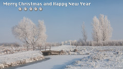Merry Christmas and Happy New Year (BraCom (Bram)) Tags: christmas xmas bridge trees snow holland ice canon fence is bomen ditch hoarfrost widescreen sneeuw nederland thenetherlands balls l usm brug merrychristmas 169 ef f4 kinderdijk alblasserwaard happynewyear ripe kerst hek sloot ijs prettigekerstdagen zuidholland ballen alblasserdam rijp canoneos5d gelukkignieuwjaar 24105mm bracom ruby10 ruby5