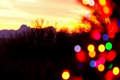 Christmas greetings (jimsc) Tags: winter sunset arizona colors yellow lights evening desert sundown tucson newyear christmastree eveningsky endofday pentaxkx skycolors christmasgreeting pimacounty
