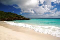 Vieques: Navío Beach