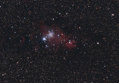Xmas Tree & Cone Nebula..Merry Christmas (Astronewb2011) Tags: christmas tree four nikon flat cone william nebula optics stellarvue Astrometrydotnet:status=solved d5100 Astrometrydotnet:version=14400 ieq45 astronewb Astrometrydotnet:id=alpha20121299213708
