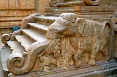 Elephant (Victoria Lea B) Tags: india elephant stair step thanjavur hindu hinduism tamilnadu brihadishwaratemple