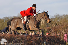 Huntsman (Vicktrr) Tags: winter horses horse fence bay jumping december leicestershire hunting hound boxingday jacket hunter piebald cob loughborough hounds 2012 foxhound cobs brushfence prestwoldhall huntingpink flickraward quornhunt
