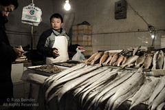 Fresh Seafood (Russ Beinder) Tags: china street fish cn market candid beijing vendor tamron monger