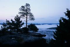 Katzstein | Sächsische Schweiz (36Bilder) Tags: film analog trekking fuji nebel wolken nikonf100 sachsen wandern provia100f sächsischeschweiz abenddämmerung elbsandsteingebirge saxonswitzerland katzstein nebelstimmung