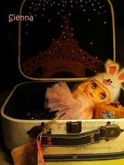 Sienna traveling box