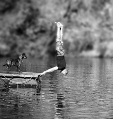 Keeping Cool 2 (phunnyfotos) Tags: summer bw dog lake man hot swimming mono nikon looking watching dive australia diving monotone victoria vic swimminghole pontoon heatwave northeastvictoria d5100 nikond5100 phunnyfotos