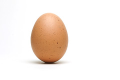 10/365 egg (photography.andreas) Tags: egg whitebackground day10 ei project365 produktfotografie day10365 3652013 365the2013edition 10jan13